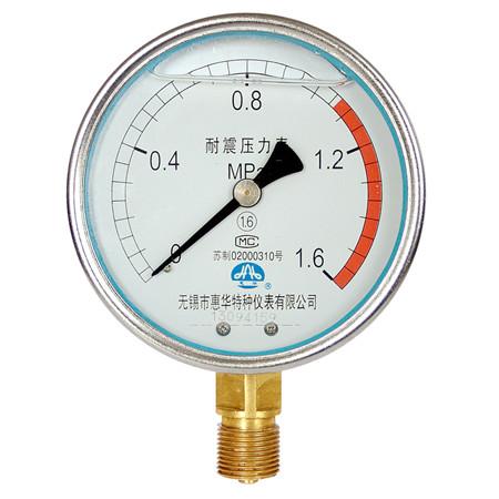 YN-100径向耐震压力表
