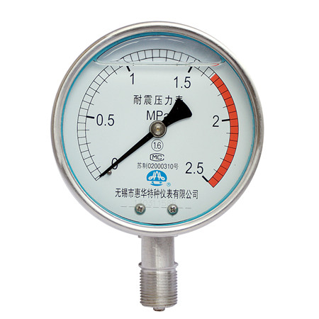 YNBF-100不锈钢耐震压力表
