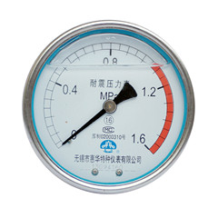 YN-100轴向无边耐震压力表