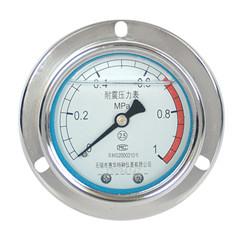 YN-60轴向带边耐震压力表